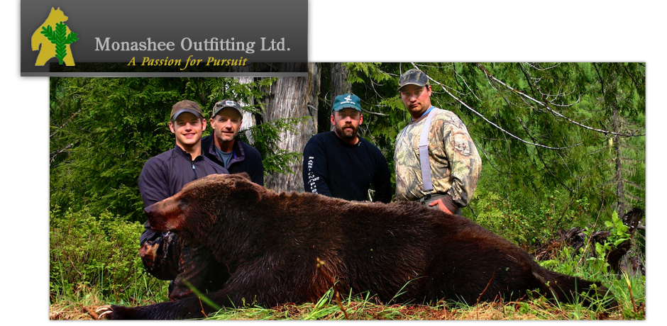 Monashee Outfitting Ltd.  - Grizzly Bears
